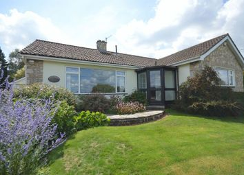 Thumbnail 3 bed detached bungalow for sale in Undertown Lane, Compton Martin, Bristol