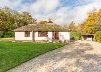 Thumbnail 3 bed detached bungalow for sale in Runsell Lane, Little Baddow