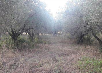 Thumbnail Land for sale in Lagomandra, Chalkidiki, Gr