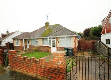 Thumbnail 2 bed bungalow to rent in Dale View, Hove