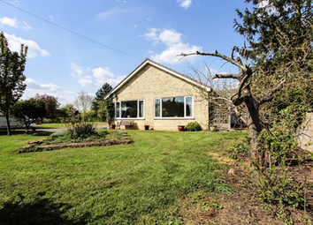 Thumbnail 3 bed bungalow for sale in Barway, Ely, Cambridgeshire