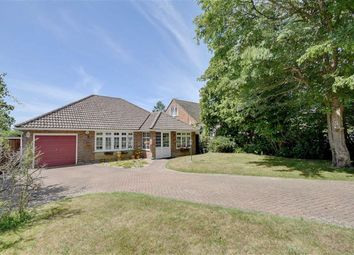 Thumbnail 3 bed detached bungalow for sale in Hawthylands Road, Hailsham