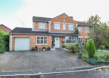 Thumbnail 5 bed detached house for sale in Halesworth Close, Walton, Chesterfield