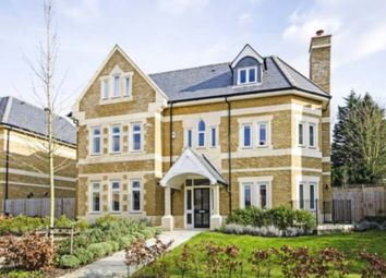 Thumbnail 6 bed detached house for sale in Havanna Drive, London