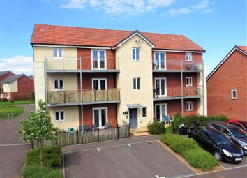 Thumbnail 2 bed flat for sale in Elsie Place, Exeter