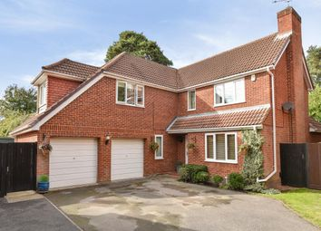 Thumbnail 4 bed detached house for sale in Frimley, Camberley