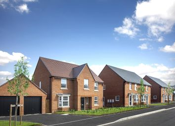 "Thumbnail 4 bedroom detached house for sale in ""Winstone"" at Grove Road, Preston, Canterbury"