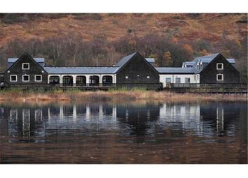 Thumbnail Leisure/hospitality to let in Mcgregor's Landing, By Arrochar, Ardlui, Scotland