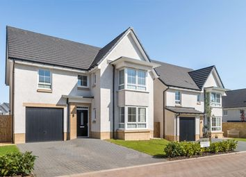 "Thumbnail 4 bedroom detached house for sale in ""Fairmount"" at Liberton Gardens, Liberton, Edinburgh"