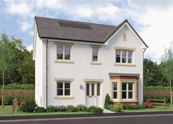 "Thumbnail 4 bed detached house for sale in ""Douglas"" at Red Deer Road, Cambuslang, Glasgow"