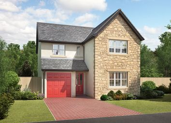 "Thumbnail 4 bedroom detached house for sale in ""Durham"" at Stoney Lane, Galgate, Lancaster"