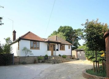 Thumbnail 2 bed detached bungalow for sale in Guildford Road, Mayford, Woking