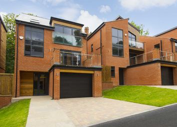 Thumbnail 4 bed detached house for sale in Springfield Pastures, Alexandra Park