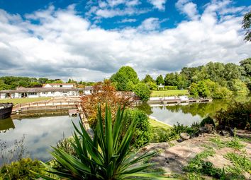 Thumbnail 4 bed detached bungalow to rent in Temple Gardens, Staines-Upon-Thames