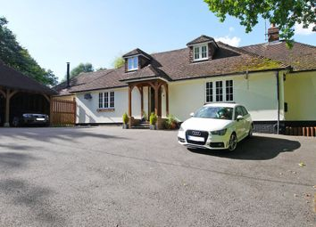 Thumbnail 5 bed detached bungalow to rent in Petworth Road, Wisborough Green, Billingshurst