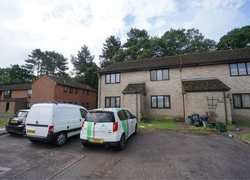 Thumbnail 1 bedroom flat to rent in Gazelle Court, Colchester, Essex.