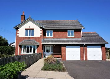 Thumbnail 4 bed detached house for sale in Bruce Court, Lochmaben