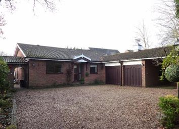 Thumbnail 4 bedroom bungalow for sale in Springfields, Broxbourne