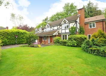 Thumbnail 5 bed detached house to rent in Redwood Drive, Sunningdale, Ascot