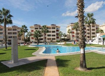 Thumbnail 80 bed apartment for sale in 03189 Villamartín, Alicante, Spain