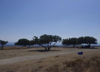 Thumbnail Land for sale in Konia, Paphos, Cyprus