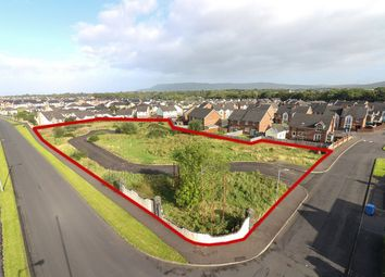Thumbnail Land for sale in Drummond Manor, Limavady, County Londonderry