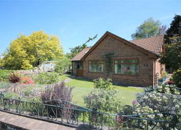 Thumbnail 4 bedroom detached bungalow for sale in Ellwood, Coleford