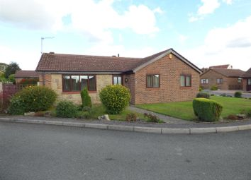 Thumbnail 3 bed bungalow for sale in Limes Park, Ripley