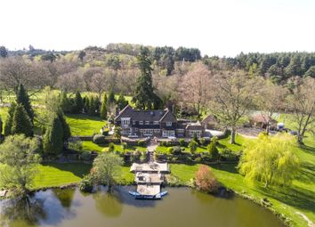 Pitch Place, Thursley, Godalming, Surrey GU8. 5 bed equestrian property for sale
