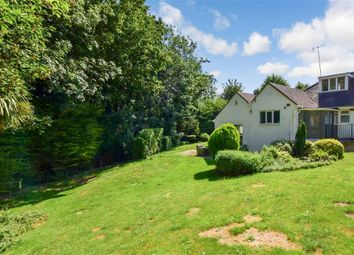 Thumbnail 4 bedroom detached bungalow for sale in Torton Hill Road, Arundel, West Sussex