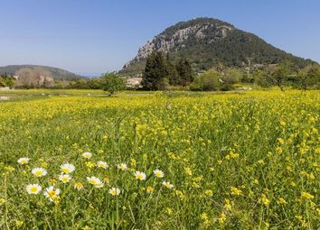 Thumbnail Land for sale in Spain, Mallorca, Pollença