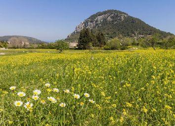 Thumbnail Land for sale in Spain, Mallorca, Pollença
