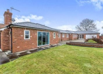 Thumbnail 5 bed bungalow to rent in Butterton, Newcastle-Under-Lyme