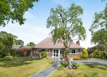 Thumbnail 3 bed bungalow for sale in Pinewoods, Bexhill-On-Sea