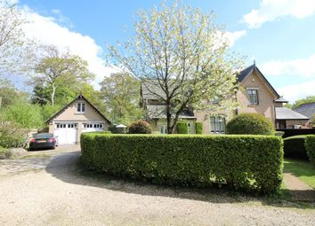 Thumbnail 3 bed semi-detached house for sale in Heath Cottage, Sandford, Wareham