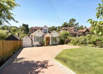 Thumbnail 4 bed bungalow for sale in Hendon Wood Lane, London