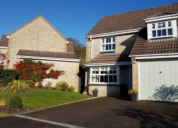 Thumbnail 3 bed detached house for sale in Prospect Place, Mere, Warminster