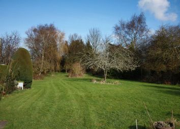Thumbnail 4 bed property for sale in Newton, Sturminster Newton