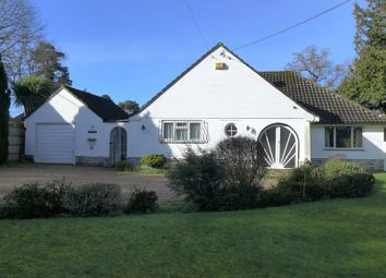 Thumbnail 3 bed detached bungalow for sale in Pinewood Road, Ferndown