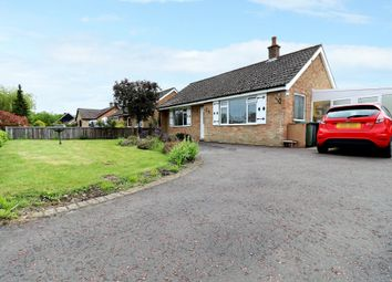 Thumbnail 2 bed detached bungalow for sale in Hall Lane, Wacton, Norwich