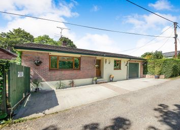 Thumbnail 3 bed detached bungalow for sale in Charlton On The Hill, Charlton Marshall, Blandford Forum