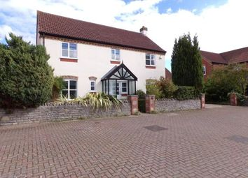 Thumbnail 4 bed detached house for sale in Stawell, Bridgwater, Somerset