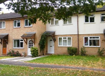 Thumbnail 2 bed terraced house to rent in Orchid Close, Taunton