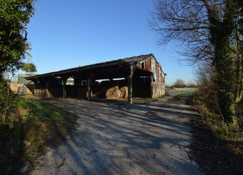 Thumbnail Barn conversion for sale in Appleton Barn, Wick St Lawrence, Somerset