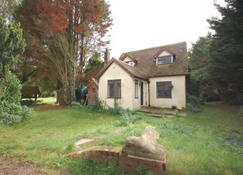 Thumbnail Detached bungalow for sale in Dowsetts Lane, Stock, Stock