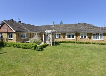 Thumbnail 5 bed bungalow for sale in Lords Hill Common, Shamley Green, Guildford