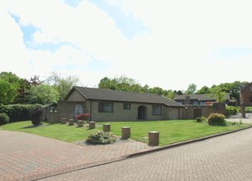 Thumbnail 3 bed detached bungalow for sale in Marwood Grove, Peterlee