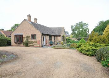 Thumbnail 3 bed detached bungalow to rent in Holywell Way, Longthorpe, Peterborough