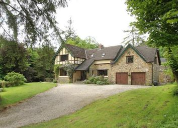 Thumbnail 6 bed detached house for sale in Long Causeway, Sheffield, South Yorkshire