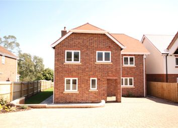 Thumbnail 5 bed detached house for sale in Beech Close, Spetisbury, Blandford Forum, Dorset